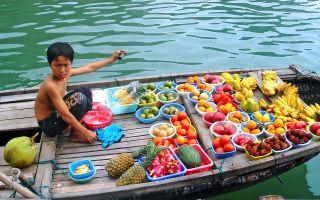 Вьетнам с детьми: куда и когда лучше лететь отдыхать